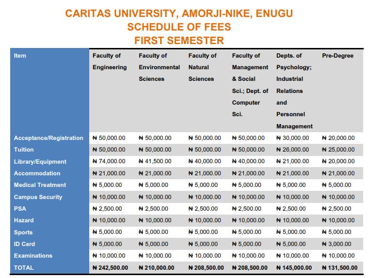 Caritas University School Fees