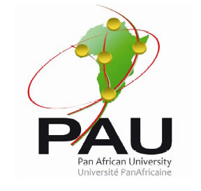 Pan African Scholarship