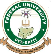 FUOYE Postgraduate Admission Form