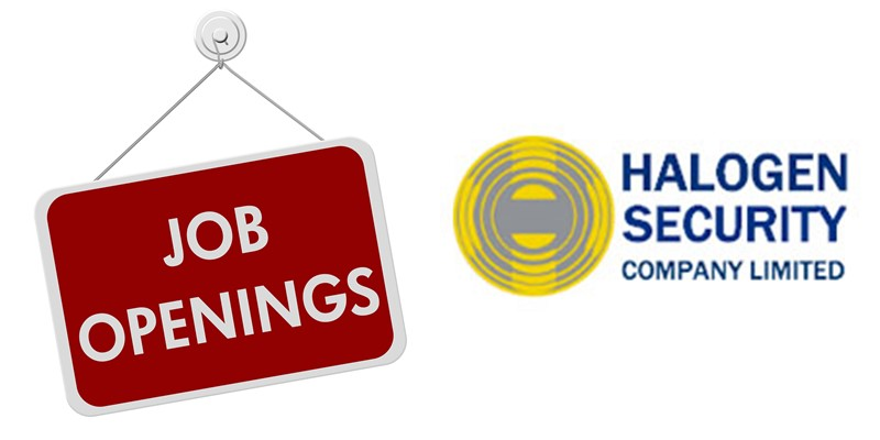 Corporate Drivers at Halogen Security Company